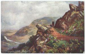 Precipice Walk, Dolgelly, Wales Vintage Postcard