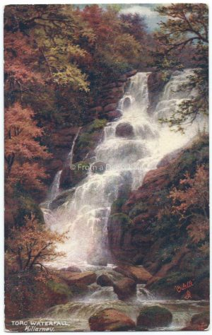 Torc Falls, Killarney, Ireland Vintage Postcard
