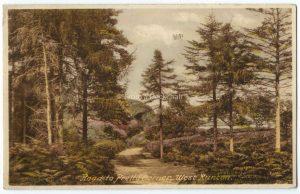 West Runton. Vintage Postcard