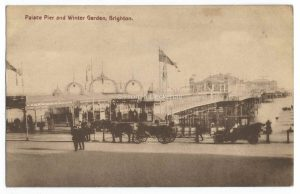 Palace Pier & Winter Garden Brighton Vintage Postcard